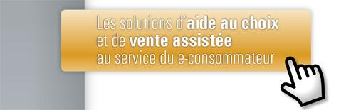Solutions de vente assistée au service du e-consommateur