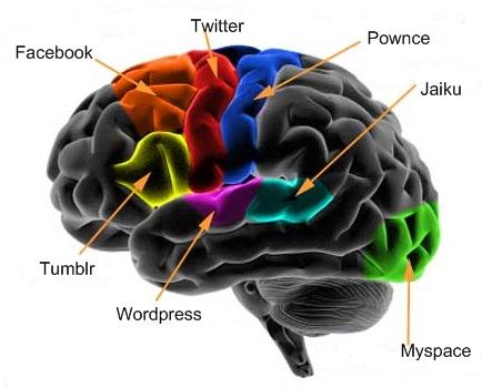 Cerveau 2.0
