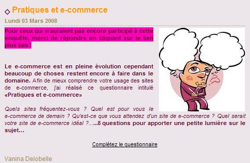 Vanina Delobelle Questionnaire E-commerce