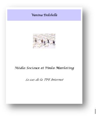 Médias sociaux et pinko marketing Thèse