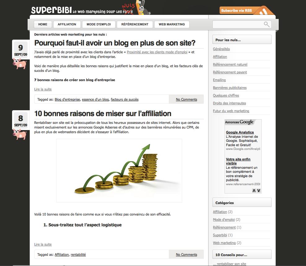 superbibi-webmarketing-pour-les-nuls