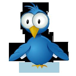 twitter-logo-oiseau-gros-yeux