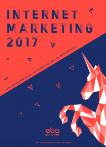 livre-internet-marketing-2017