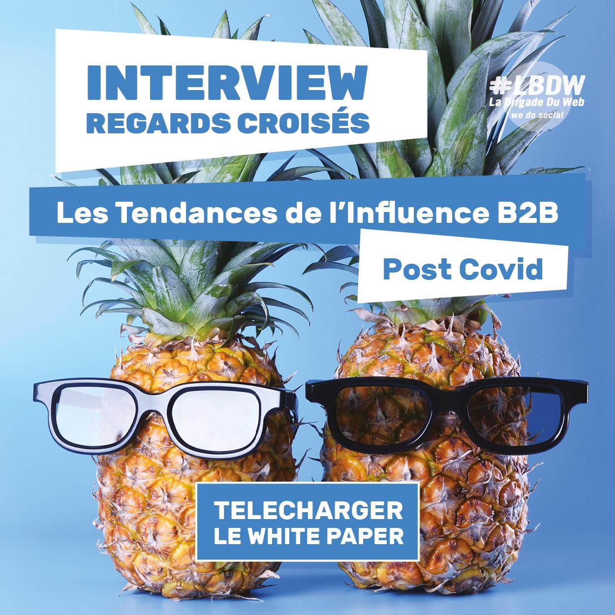 Livre blanc Influence B2B